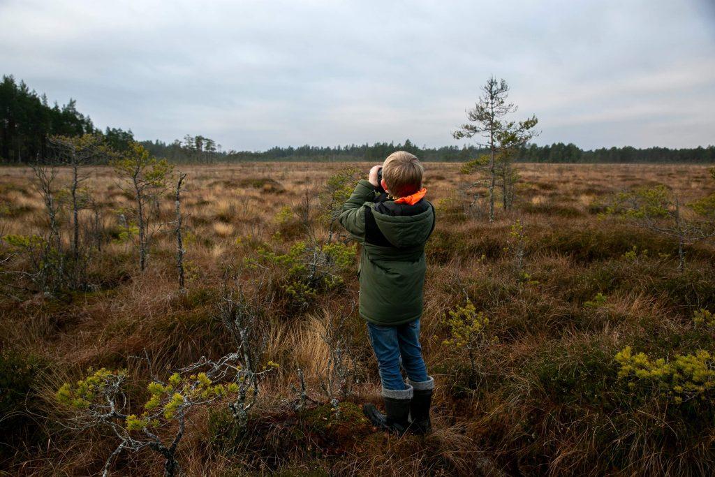 Vindkraft, Stora mossen Natura 2000-område vid område Högsjön. Foto Alice Lewy